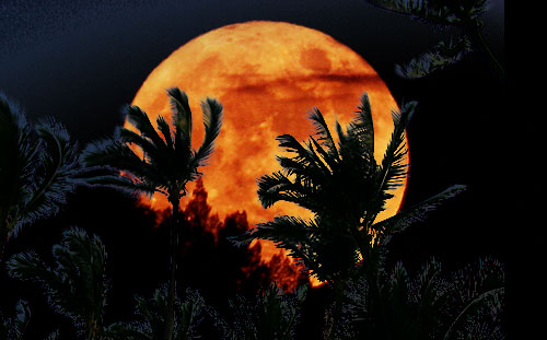 Super Moon Will Dazzle Hawaii Skies Tonight