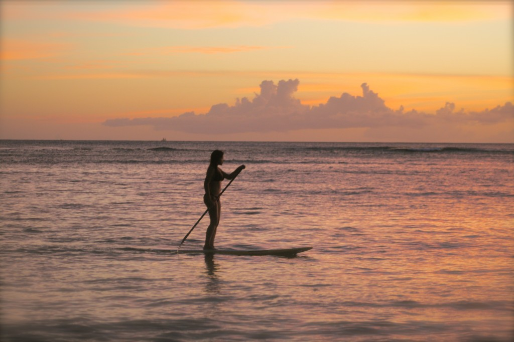 Endless Adventures Hawaii is a One Stop Ocean Activity Fix