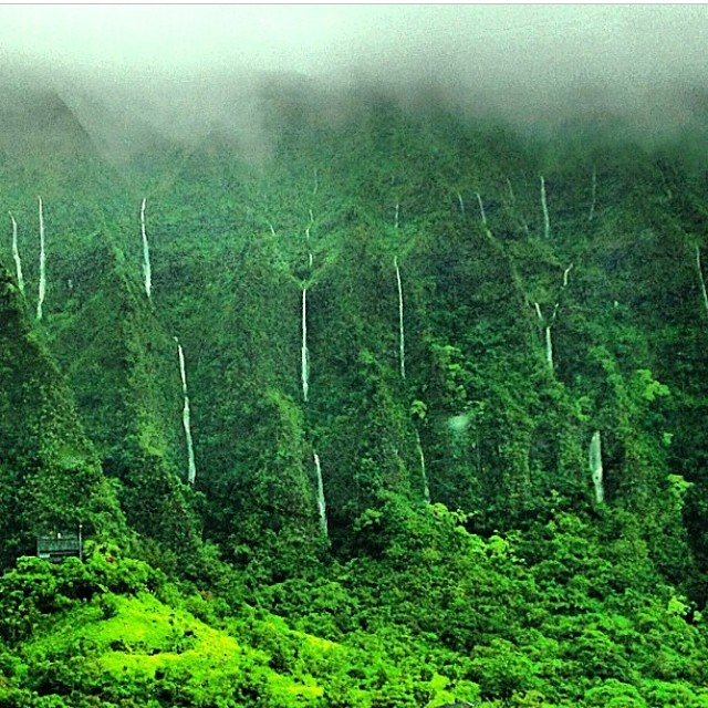 Koolau Mountain waterfalls. Hawaii is beautiful all the time... Even when it rains. #hawaii #beauty #islandlife #oahu #koolaumountains #waterfalls #mountainwaterfalls #gobeyond