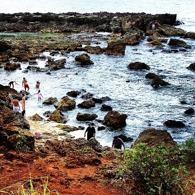 Shark's Cove on the North shore. #sharkscove #snorkeling #oahu #northshore #hawaii #gobeyond