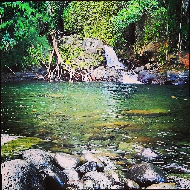 Secret swimming spot off the highway on Big Island. #bigisland #secretspot #hawaii #naturalbeauty #gobeyond