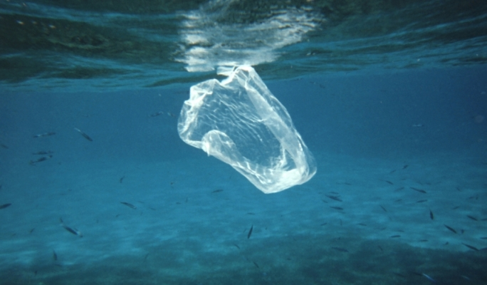 Hawaii Bans Plastic Bags at Checkout, Becomes First State to Do So