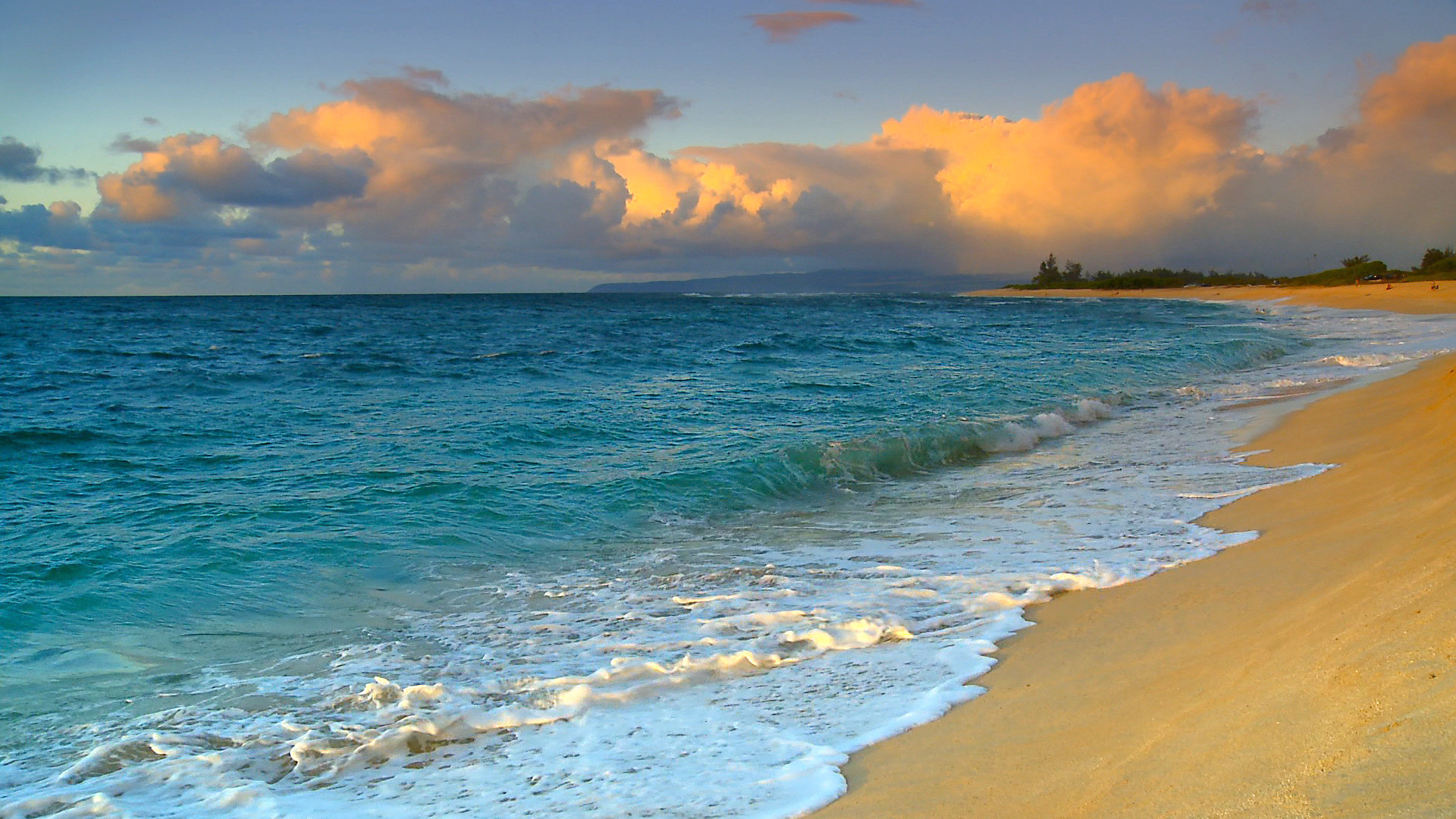 10 New Hawaii Beach Pictures Wallpapers Full Hd 1920 1080: New Survey Ranks Hawaii Beaches Among World's Best
