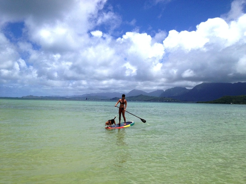 popular watersports in hawaii