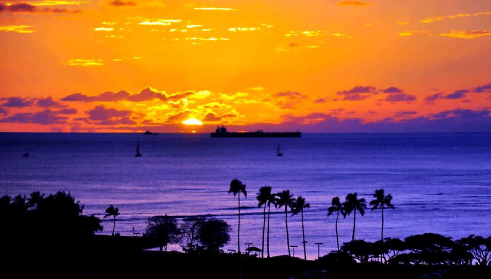 How to bring honolulu home with you