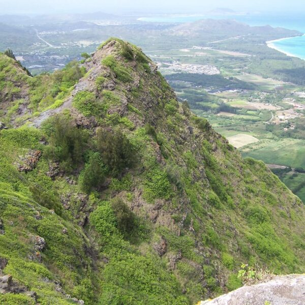 Beautiful Honolulu Hikes